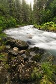 Winner Creek in the Chugach National Forest near Girdwood, Alask.a