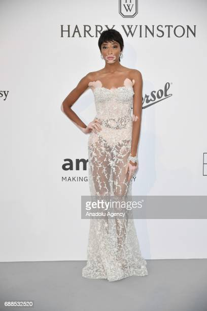 Winnie Harlow attends the Amfar Gala at Hotel du CapEdenRoc in Cap d'Antibes France on May 26 2017