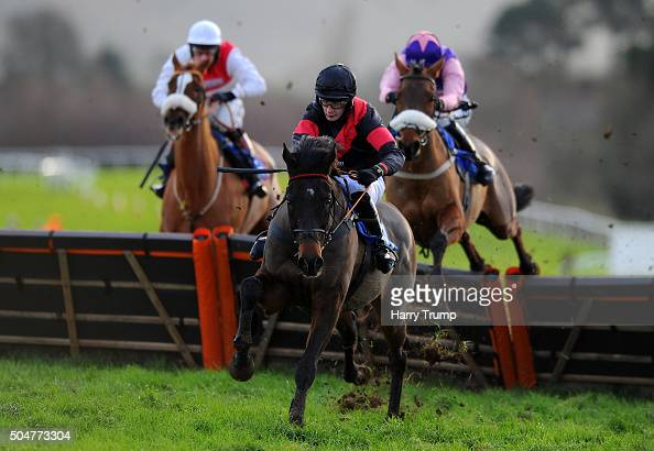 Winning Spark ridden by James Best jumps the last to win the Bathwick Tyres Handicap Hurdle at Taunton Racecourse on January 13 2016 in Taunton...