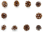 Background Frame out of snowy Pine Cones. Hand painted white for a festive winter look and isolated on white background.