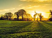 winter countryside morning,Northern Ireland