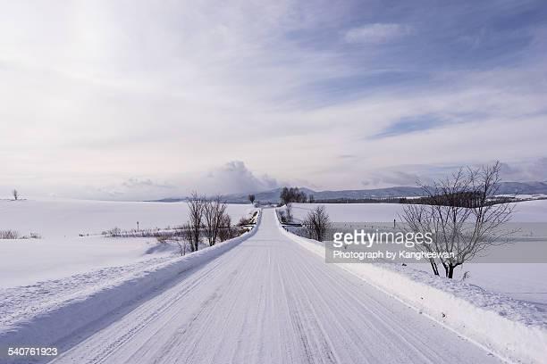 Winter Empty Road