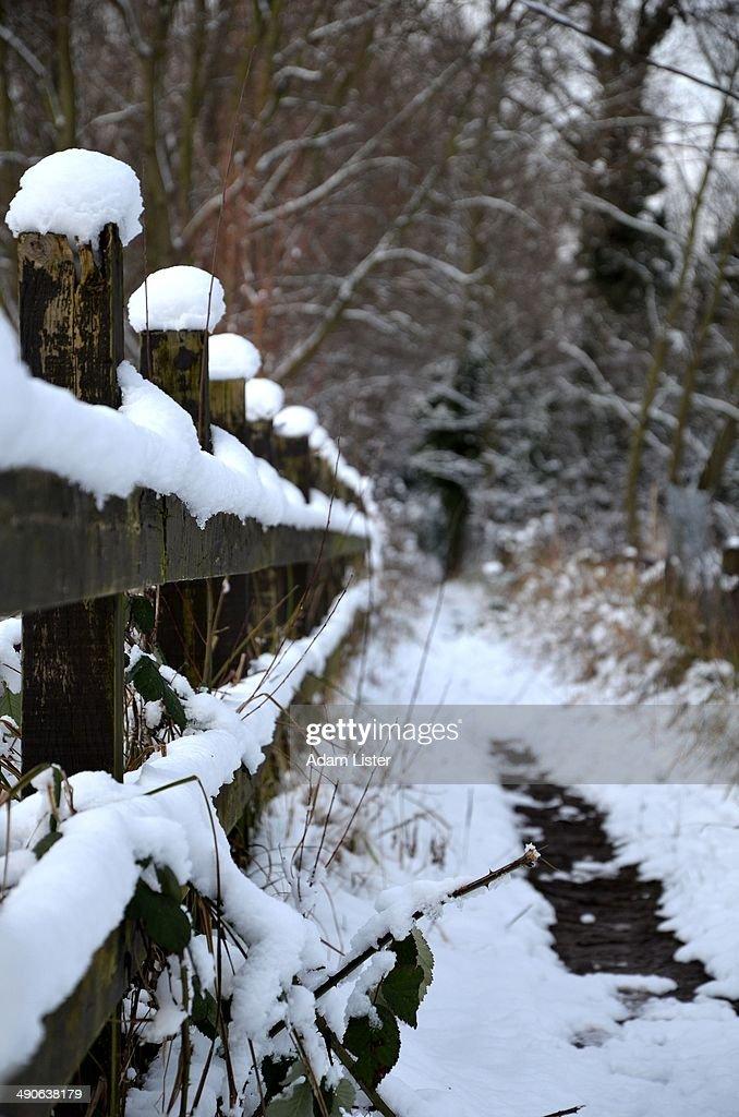 Winter Fence : Stock Photo