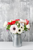 Winter flowers. Anemones in a vase watering can standing on a wooden table. On the background old gray wall art.