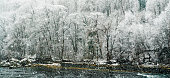 winter forest and river landscape with heavy snowfall and snowflakes on the Rhine river