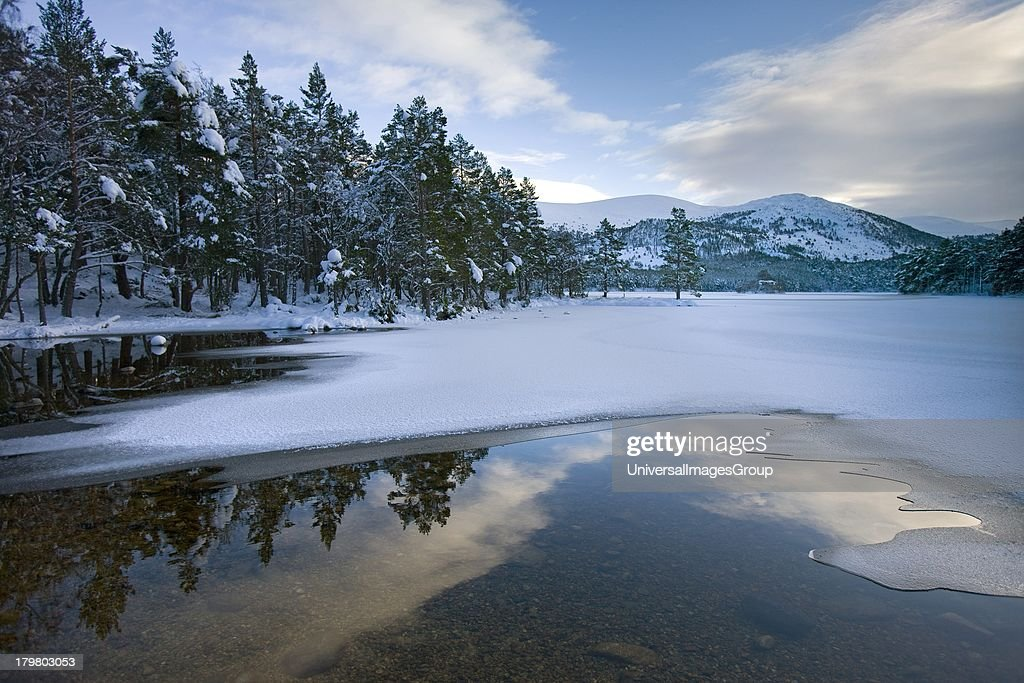 Winter from shore of Loch an Eilein Cairngorms Mountains Scottish Highlands Scotland United Kingdom