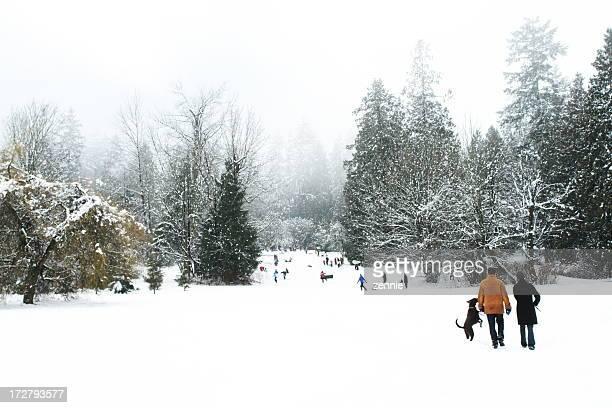 冬の公園でお楽しみください。