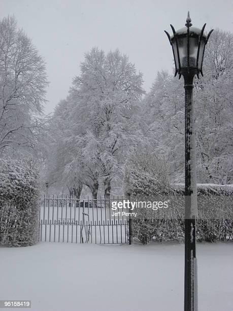 Winter gate