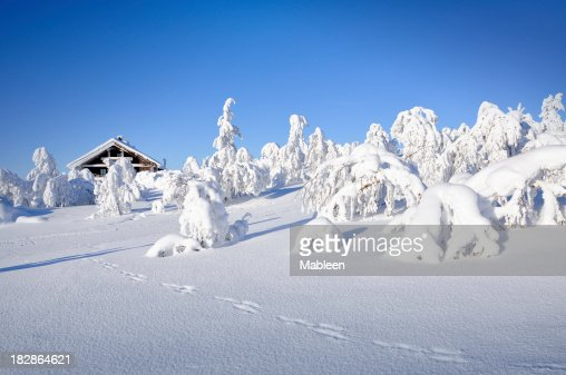 Winter, hut and tracks in snow covered landscape