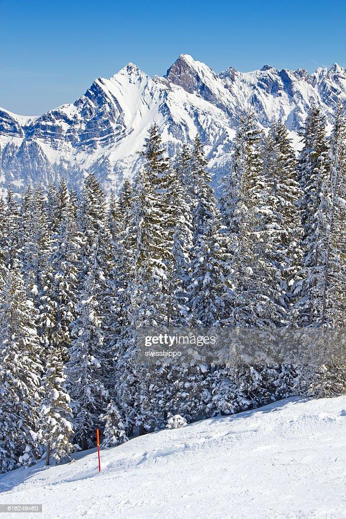 Winter in alps : Stock Photo