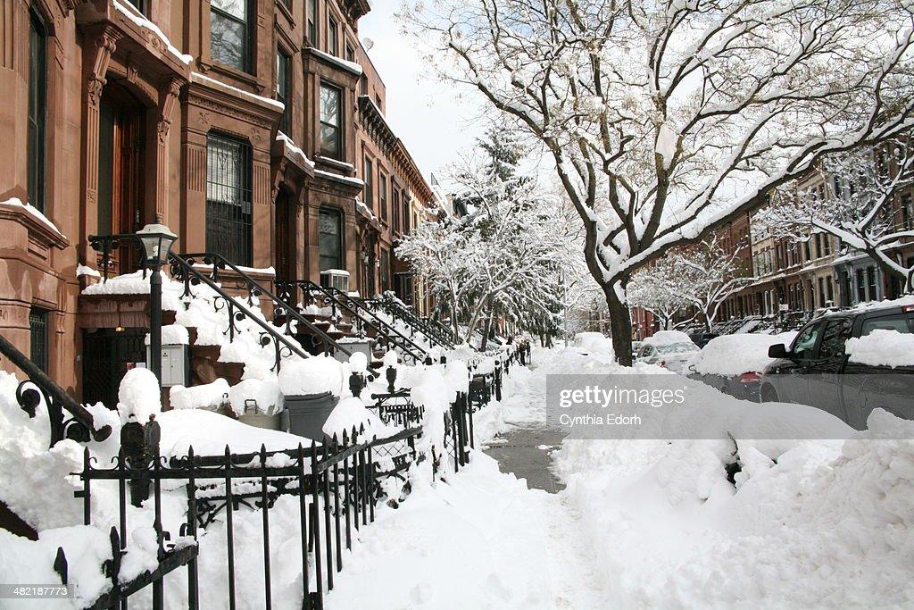 Winter in Bed-Stuy, Brooklyn : Stock Photo