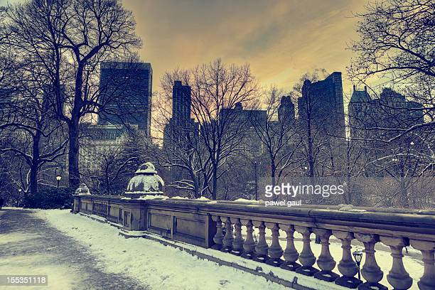 Inverno a Central Park, a New York City