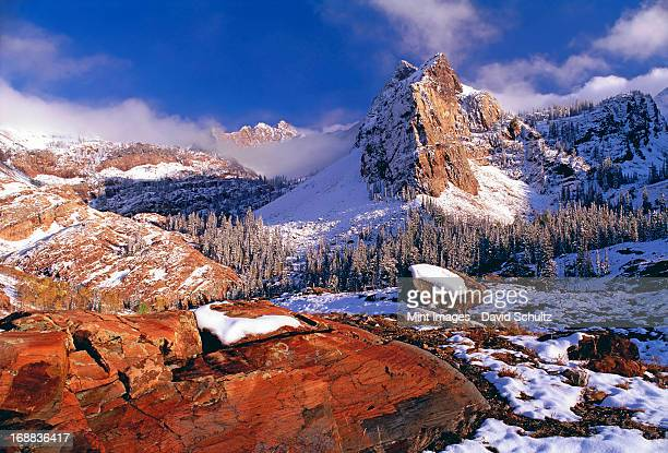 Winter in Cottonwood Canyon in the mountains of the Wasatch Range. Pine forests in snow with low cloud. The Twin Peaks wilderness area.