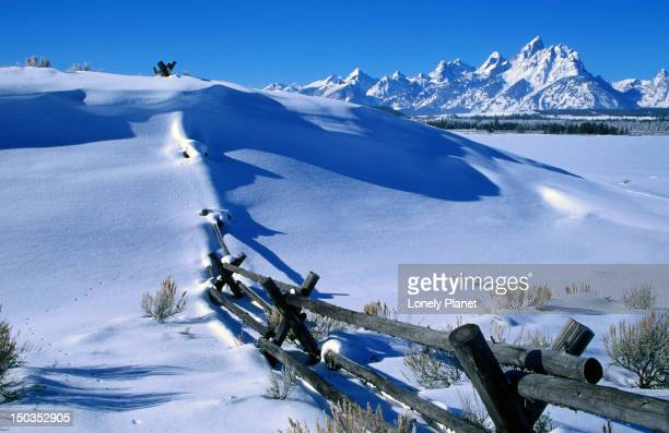 Winter in Grand Teton National Park.