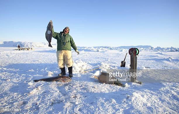 Winter in Greenland