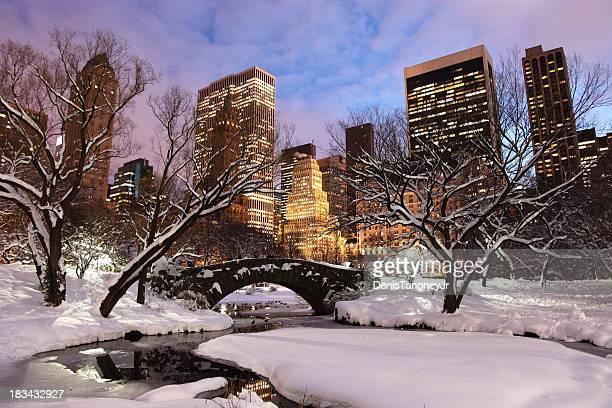 Un hiver à New York City