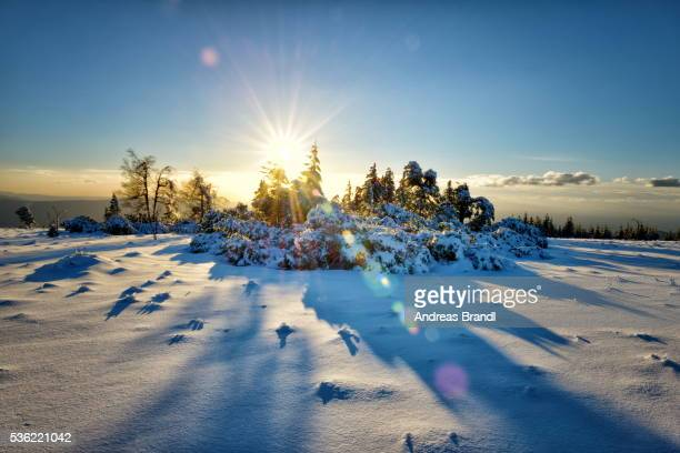 Winter landscape, an HDR image with deep snow and sun, captured on Schliffkopf mountain in Northern Black Forest, Baden-Wurttemberg, Germany, Europe