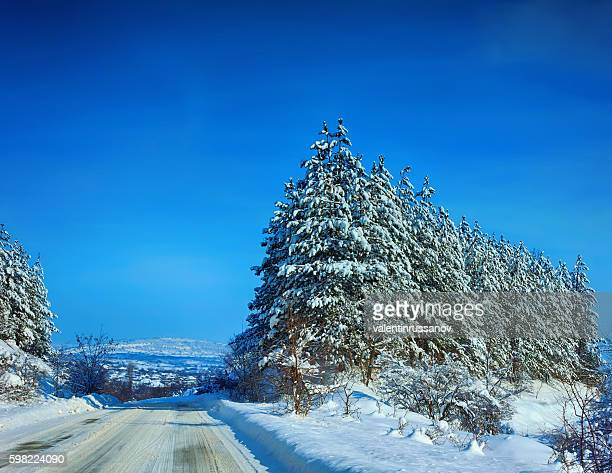 Winter Landscape with trees and a road