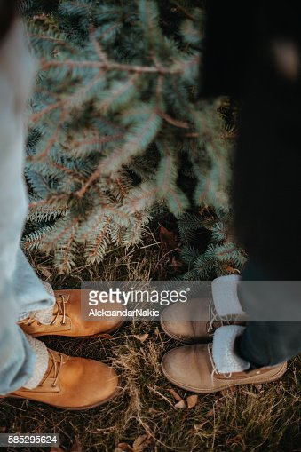 christmas feet stock photos and pictures getty images cat on sax cat on sale for cheap