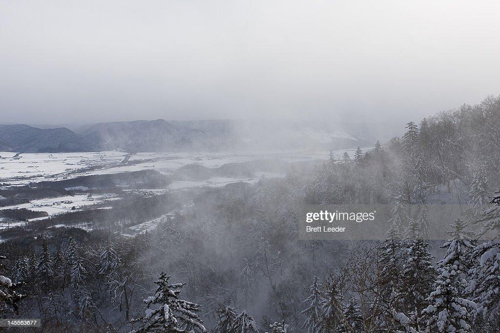 Winter mist over Furano farmland : Stock Photo