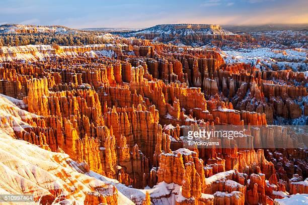 winter morning / Bryce Canyon National Park, Utah, USA