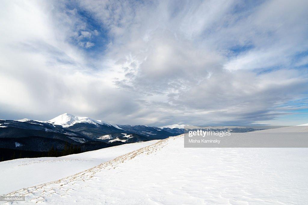 Winter morning : Stock Photo