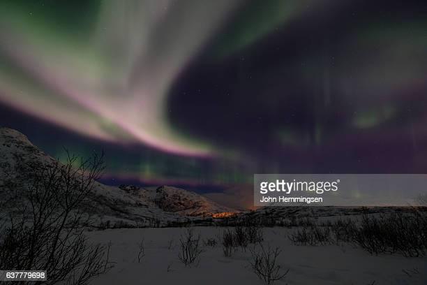 winter night in Tromso