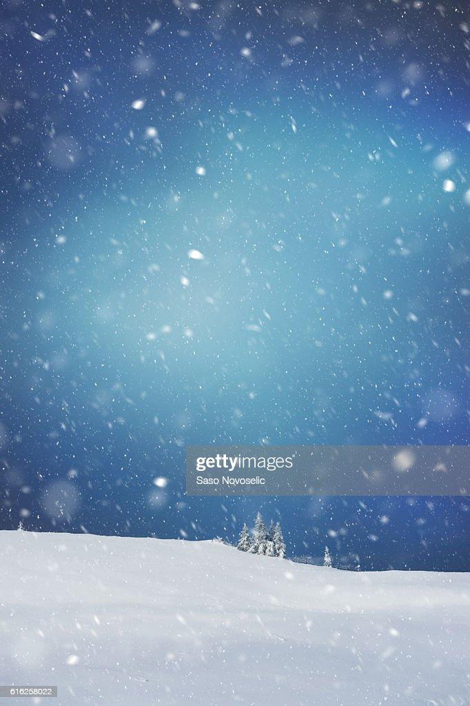 Noche de invierno : Foto de stock