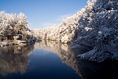 Photo of the River Taff in Cardiff, Wales during Winter.