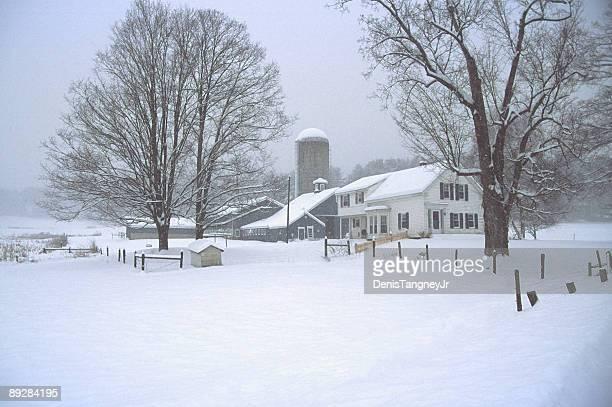 Inverno Paesaggi