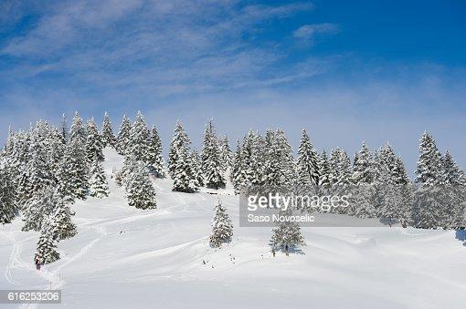 Inverno Paisagem : Foto de stock