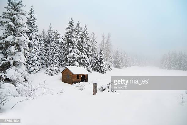 Winter Shack in Snowy Landscape
