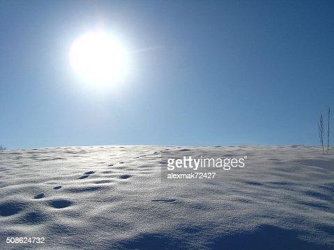 Winter solar landscape : Stock Photo