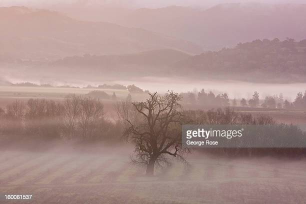 A winter storm adds to a gray foggy and misty morning on December 26 in Solvang California Because of its close proximity to Southern California and...