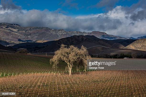A winter storm clears along the mountains and hills of the Santa Ynez Valley on January 8 2016 in Santa Ynez California Because of its close...