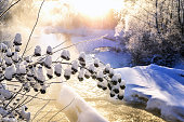 Winter sunny landscape with river and forest.Winter sunny landscape with river and forest.