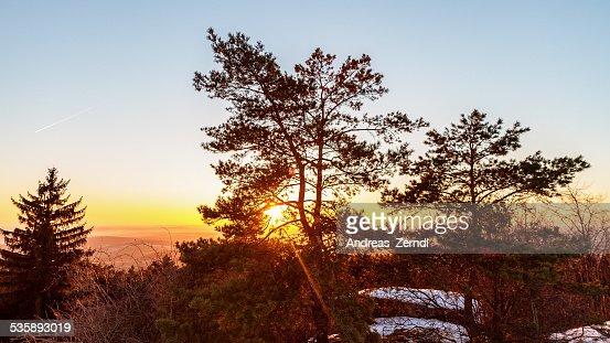 Winter Sunset : Stockfoto