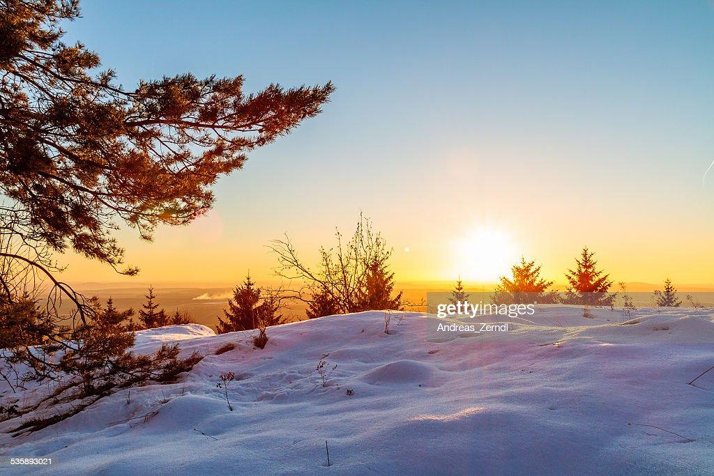 Winter Sunset : Bildbanksbilder