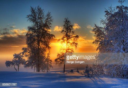 Winter sunset : Stock Photo