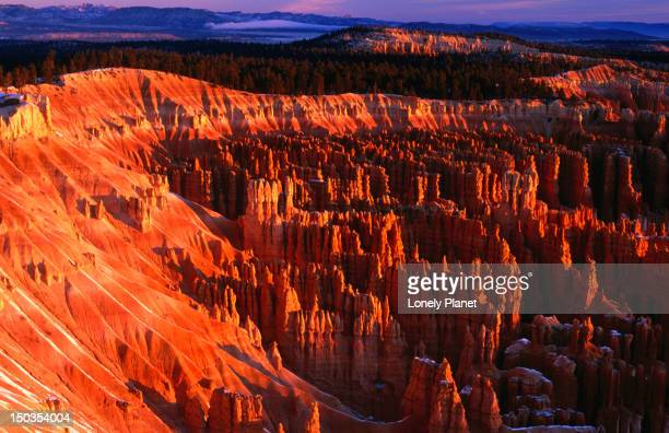 Winter time in Bryce Canyon National Park.