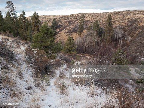Winter Trail, Eastern Washington : Stock Photo