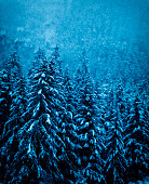 Picture of the the many scenes Alaska has to offer during the winter season.