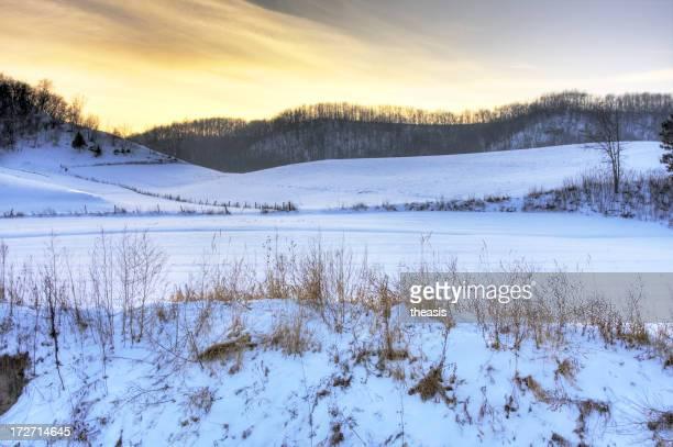 Inverno al tramonto su un paesaggio di neve alberi sullo sfondo
