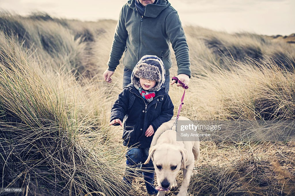 Winter walk on the beach with the dog : Stock Photo