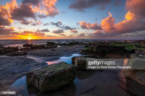 Winter's Here - Dog Beach,  Del Mar