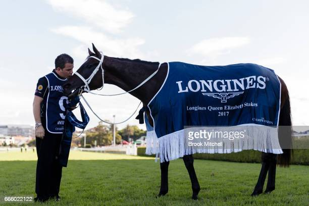 Winx is pictured after winning The Queen Elizabeth Stakes at Royal Randwick Racecourse on April 8 2017 in Sydney Australia