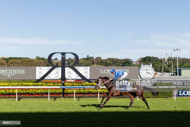 Winx strides towards the line to win the Queen Elizabeth Stakes on Championships Day 2 at Royal Randwick Racecourse on April 8 2017 in Sydney...