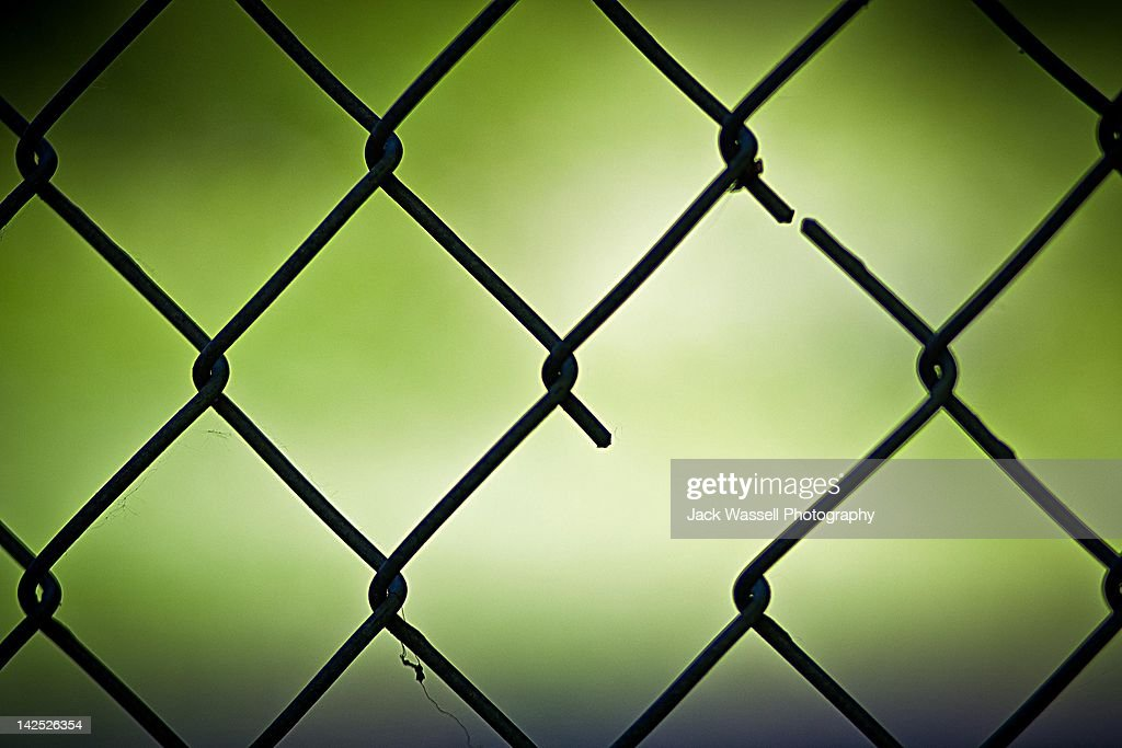 Wire mesh fence : Stock Photo
