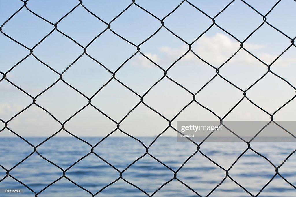 Wire netting : Stock Photo