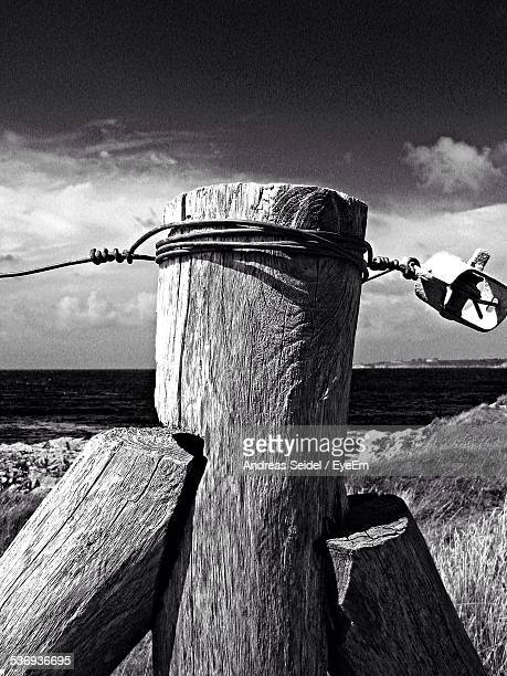 Wire Tied With Tree Trunk At Beach Against Sky